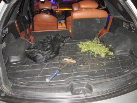 В Улан-Удэ во время погони из автомобиля Infiniti полетели мешки с марихуаной