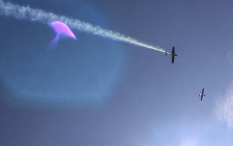 скриншот видео / sitv.ru