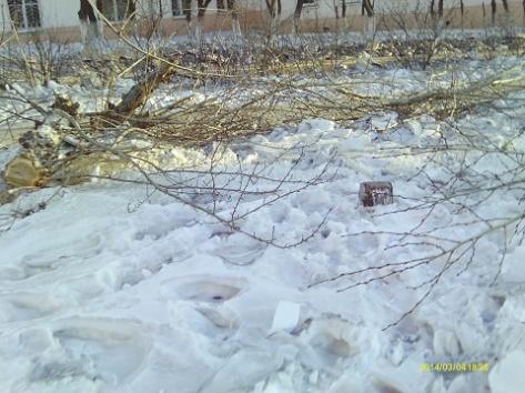 Улан-удэнцы борятся за свой двор