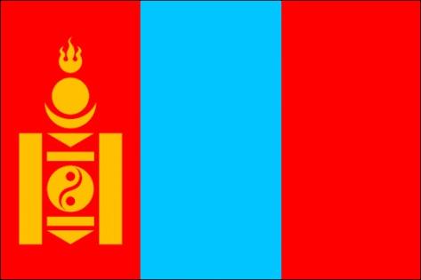 Гражданин Монголии спрыгнул с крыши в Иркутске