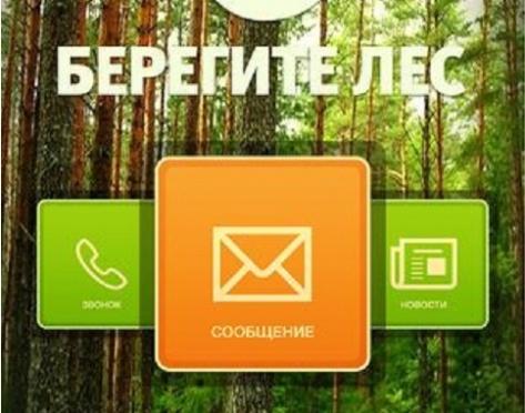 """В Бурятии продвигают мобильное приложение """"Берегите лес"""""""
