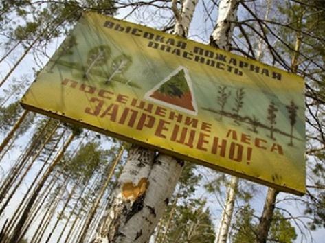/wiki.ru