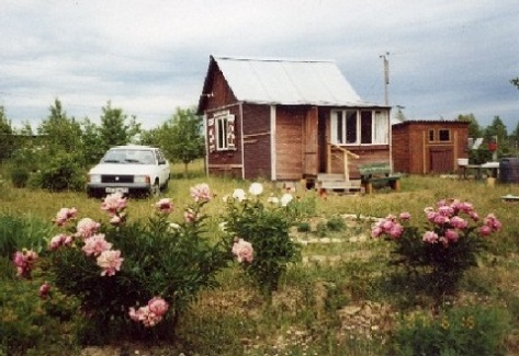 www.stihi.ru