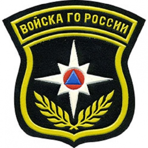 http://www.35.mchs.gov.ru/