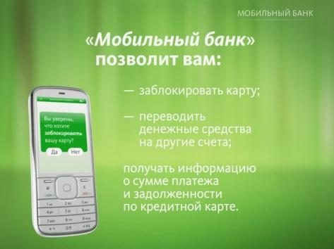 В Улан-Удэ сын украл деньги с мобильного банка отца