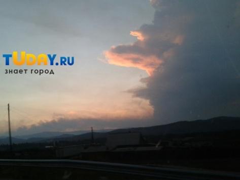Лесозаготовитель Александр Пруидзе ответил на передачу НТВ о лесных пожарах в Бурятии