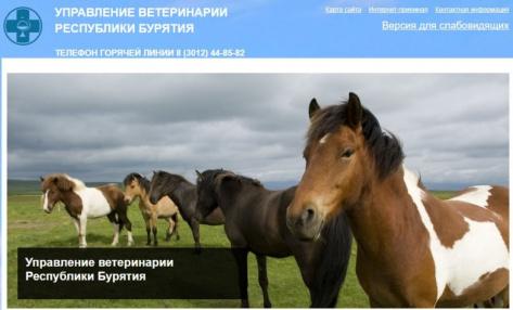 В Улан-Удэ Управление ветеринарии оштрафовали за неактуальную информацию на сайте