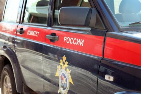 Следком России проверит скандальную историю с катком в Бурятии