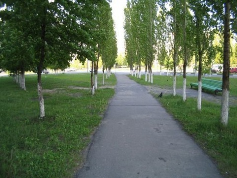 Подозреваемых в убийстве студентки в парке пока нет
