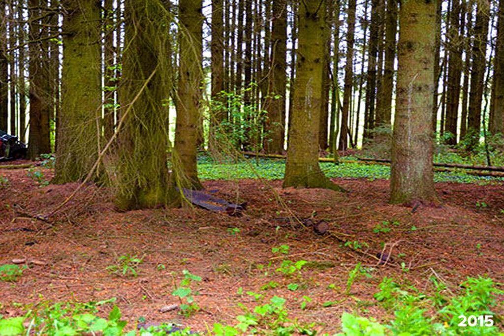 По интернету ходит фото брошенных машин в бельгийском лесу во время второй мировой - рассказываю как они там оказались и куда в итоге пропали