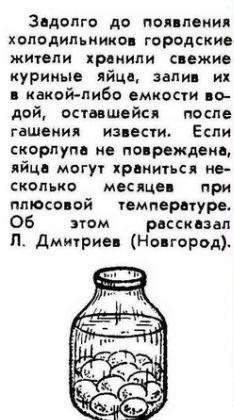 Замачить белье в соли, склеить фарфор творогом и хранить яица в банке с водой: 14 фото необычных лайфхаков из советских журналов