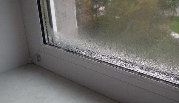 Этим способом можно избавиться от конденсата на пластиковых окнах