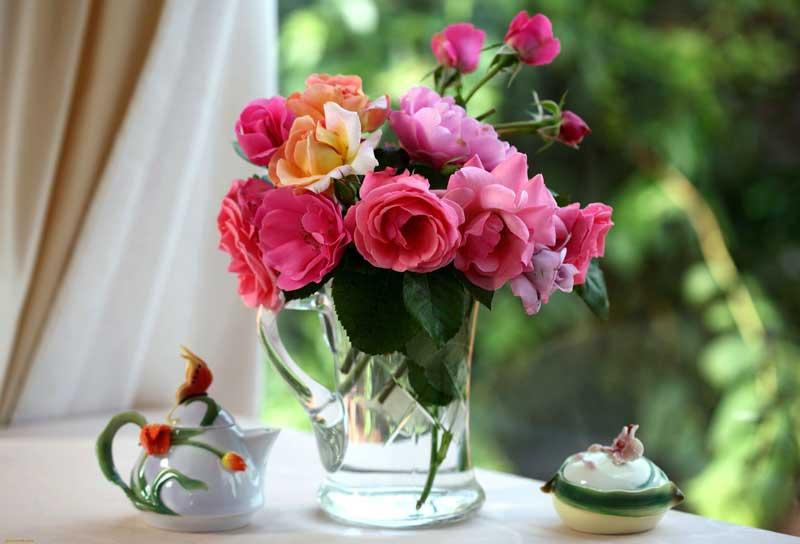10 рекомендаций как продлить жизнь срезанных цветов