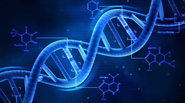 Сенсация в научном мире! Бог оставил послание человеку внутри его генома