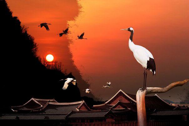 Японская Мудрость. 35 Ключевых Фраз